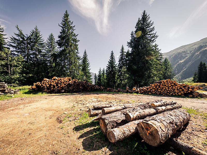 Brennholzservice – Holzlagerplatz Blatten